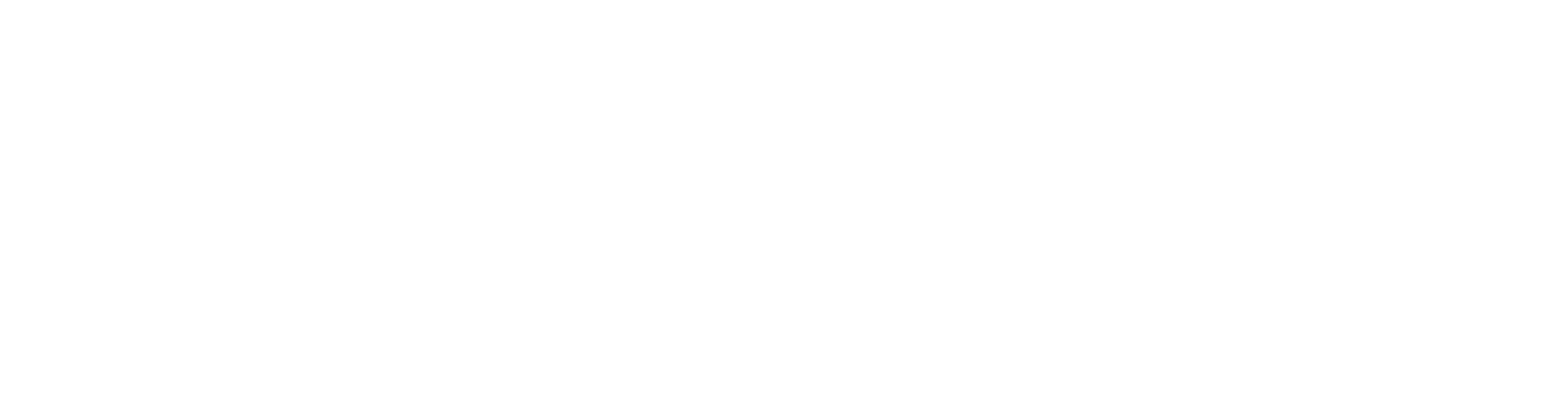 002_dommedia-schriftzug_WHITE